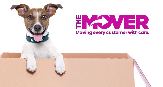 Removal companies in Swindon